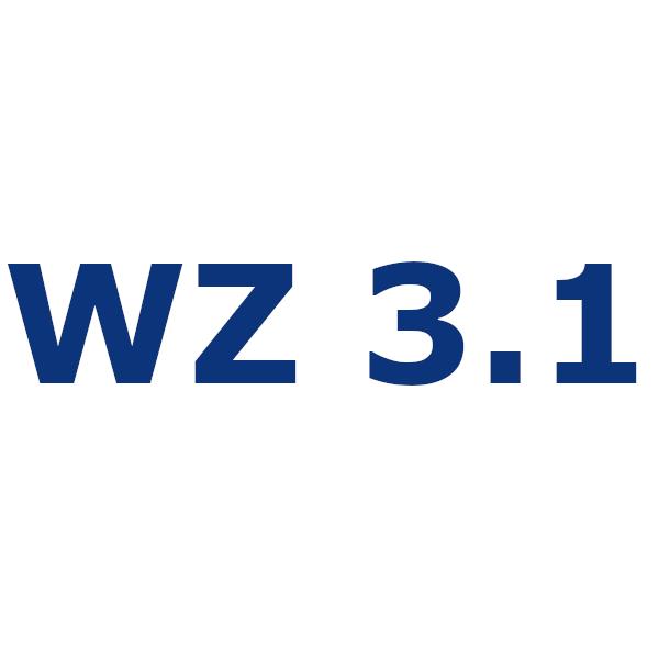 Werkszeugnis 3.1